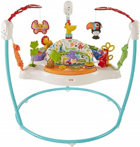 10. Fisher Price Animal Activity Jumperoo 1