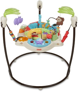6. Fisher Price Jumperoo Luv U Zoo 1
